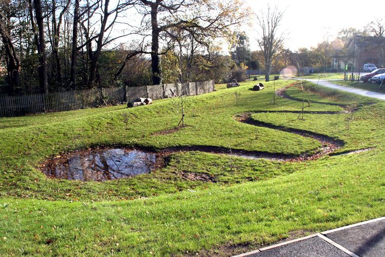 Retention Pond Landscaping