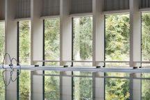 windows from interior